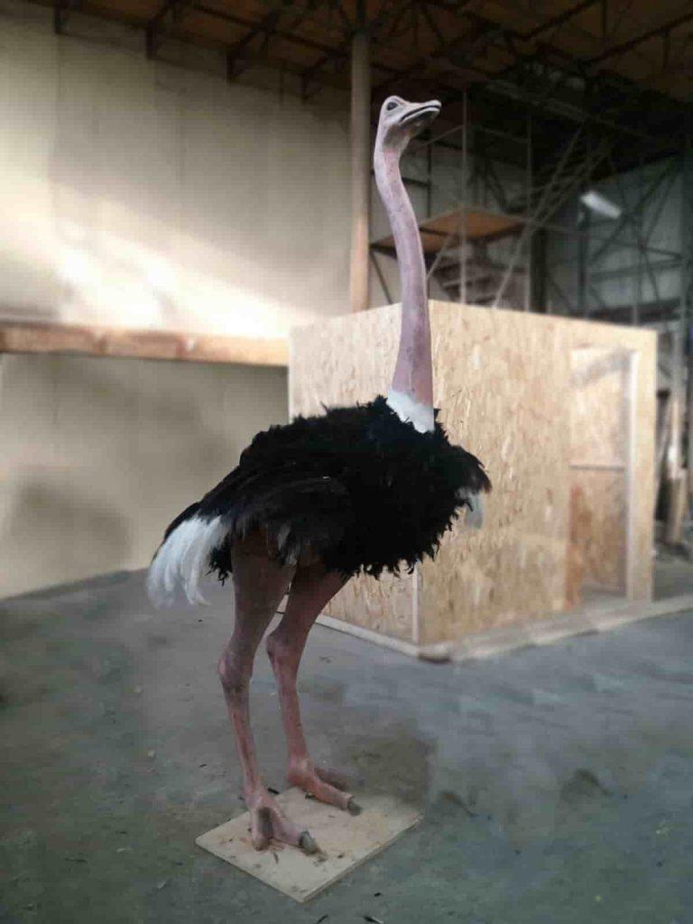 butaphors - bird - ostrich